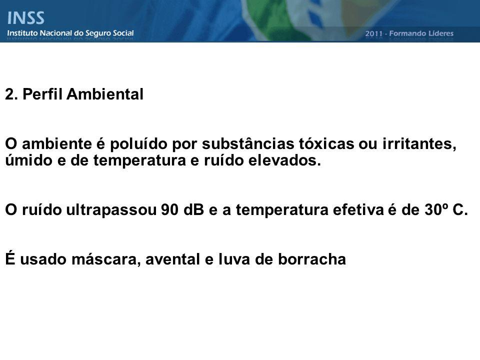2. Perfil Ambiental O ambiente é poluído por substâncias tóxicas ou irritantes, úmido e de temperatura e ruído elevados. O ruído ultrapassou 90 dB e a