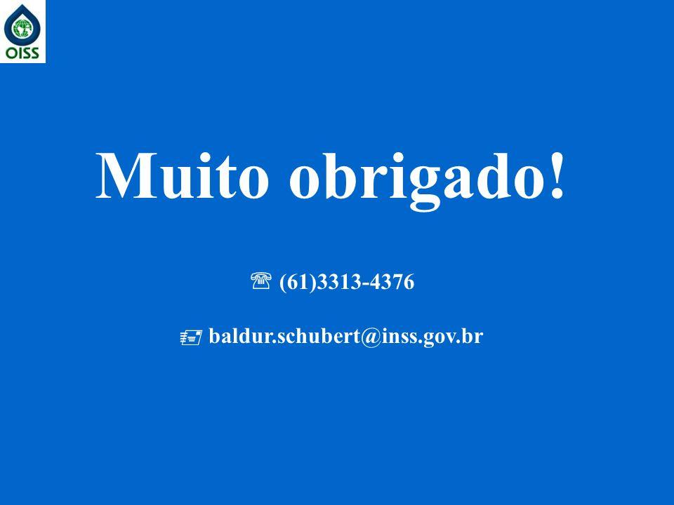 Muito obrigado! (61)3313-4376 baldur.schubert@inss.gov.br