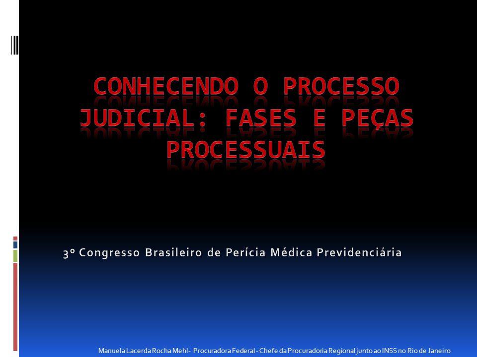 Manuela Lacerda Rocha Mehl- Procuradora Federal - Chefe da Procuradoria Regional junto ao INSS no Rio de Janeiro