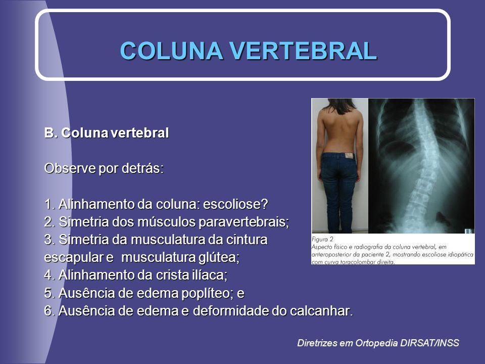 B. Coluna vertebral Observe por detrás: 1. Alinhamento da coluna: escoliose? 2. Simetria dos músculos paravertebrais; 3. Simetria da musculatura da ci