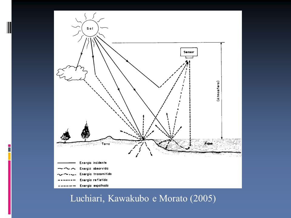 Luchiari, Kawakubo e Morato (2005)