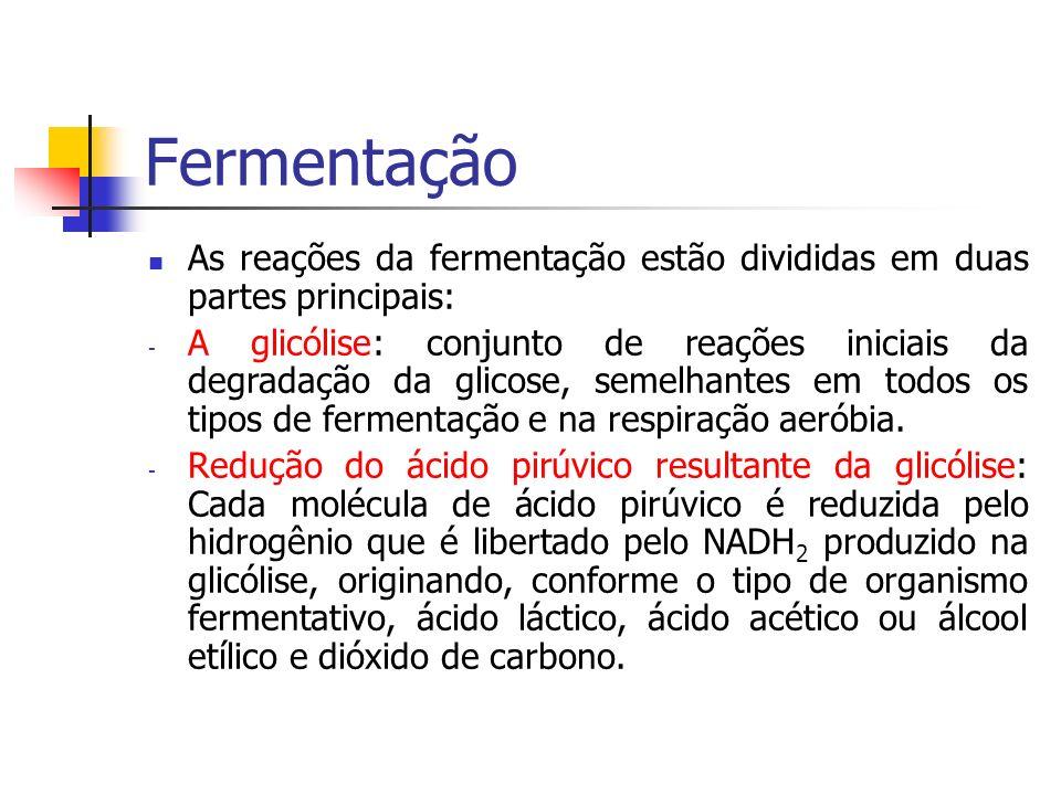 Fermentação As reações da fermentação estão divididas em duas partes principais: - A glicólise: conjunto de reações iniciais da degradação da glicose,