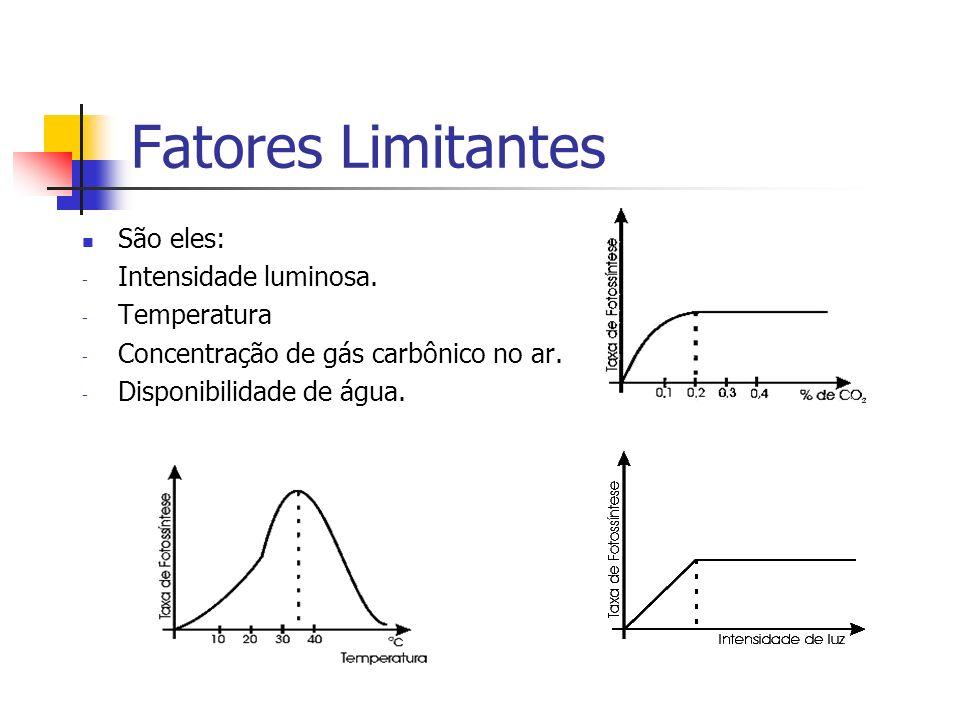 Fatores Limitantes São eles: - Intensidade luminosa. - Temperatura - Concentração de gás carbônico no ar. - Disponibilidade de água.