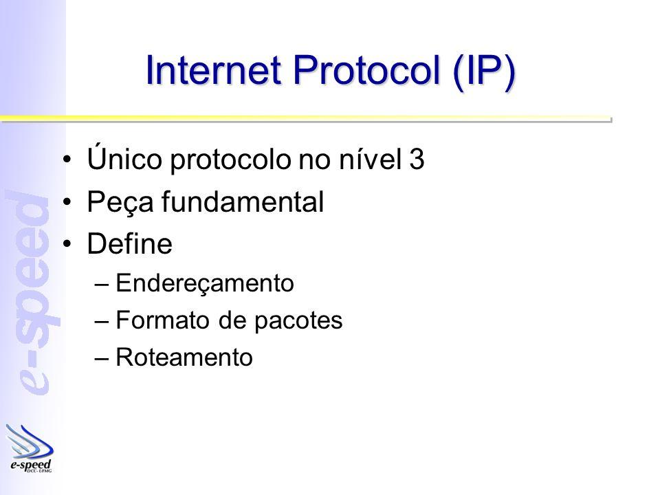 Internet Protocol (IP) Único protocolo no nível 3 Peça fundamental Define –Endereçamento –Formato de pacotes –Roteamento