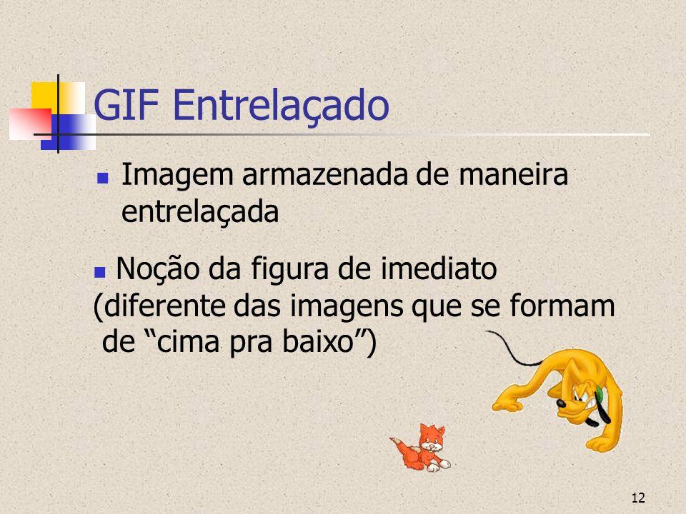 12 GIF Entrelaçado Imagem armazenada de maneira entrelaçada Noção da figura de imediato (diferente das imagens que se formam de cima pra baixo)