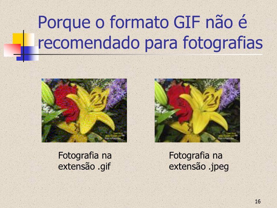 16 Porque o formato GIF não é recomendado para fotografias Fotografia na extensão.gif Fotografia na extensão.jpeg