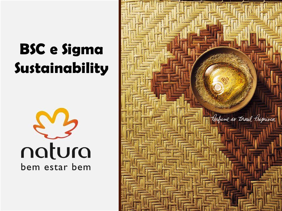EAD612- Avaliação do desempenho organizacional BSC e Sigma Sustainability