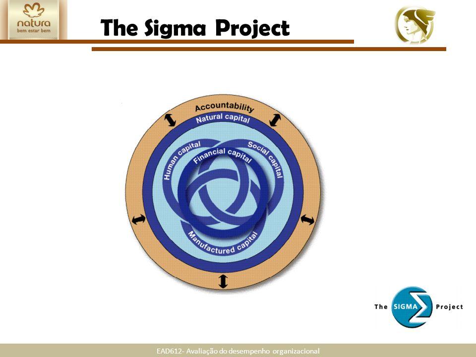 EAD612- Avaliação do desempenho organizacional The Sigma Project