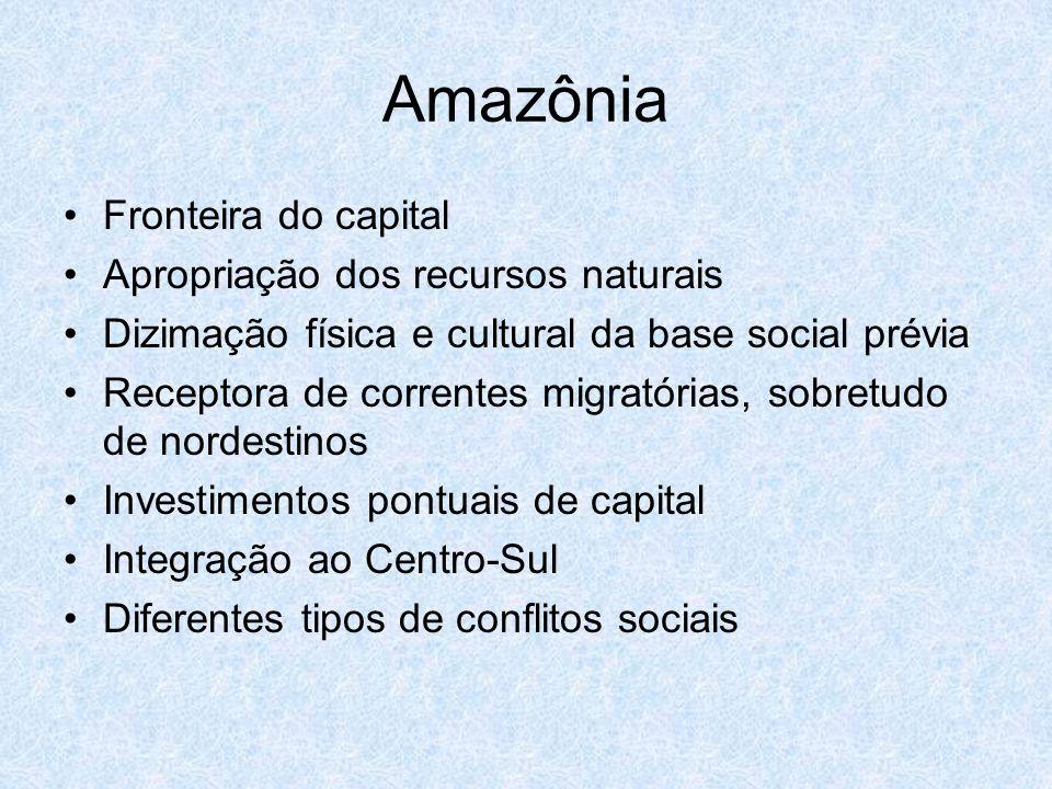 Amazônia Fronteira do capital Apropriação dos recursos naturais Dizimação física e cultural da base social prévia Receptora de correntes migratórias,