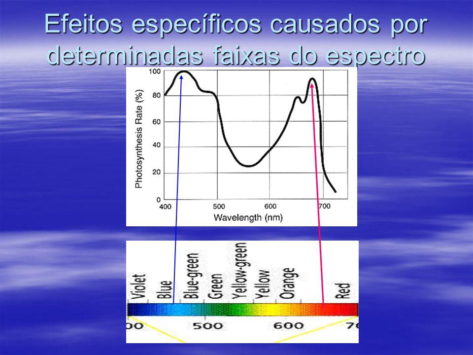 Efeitos específicos causados por determinadas faixas do espectro