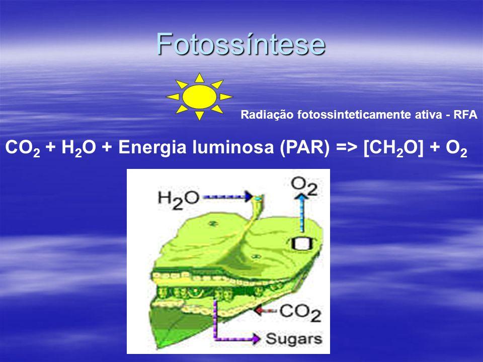 Fotossíntese CO 2 + H 2 O + Energia luminosa (PAR) => [CH 2 O] + O 2 Radiação fotossinteticamente ativa - RFA