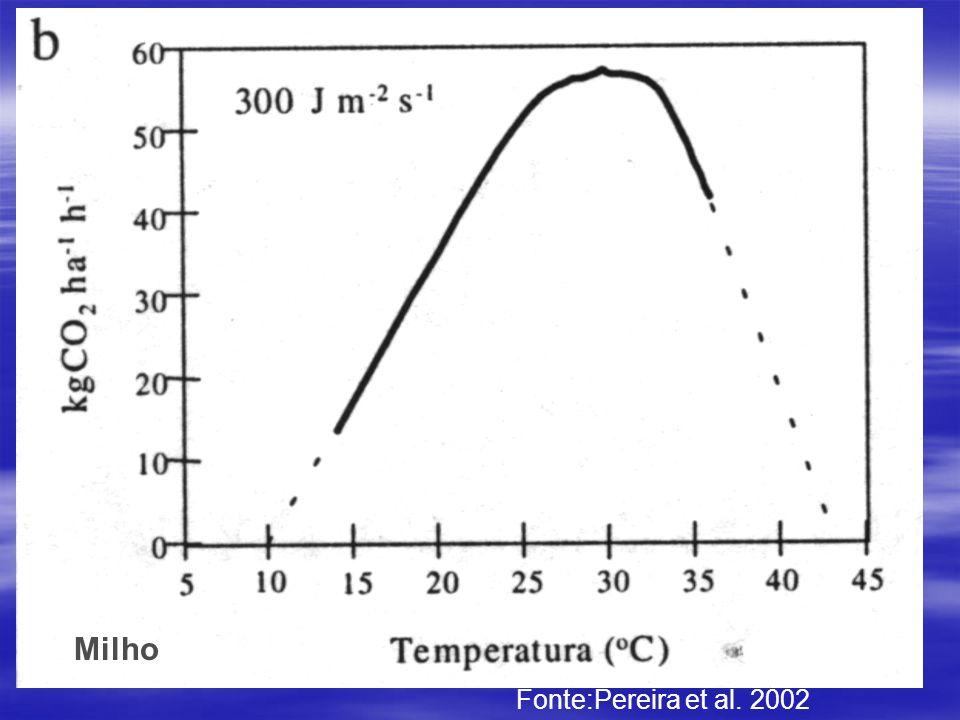 Fonte:Pereira et al. 2002 Milho