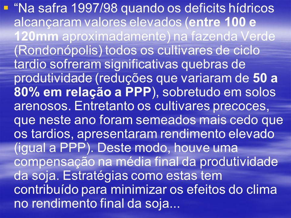 Na safra 1997/98 quando os deficits hídricos alcançaram valores elevados (entre 100 e 120mm aproximadamente) na fazenda Verde (Rondonópolis) todos os cultivares de ciclo tardio sofreram significativas quebras de produtividade (reduções que variaram de 50 a 80% em relação a PPP), sobretudo em solos arenosos.