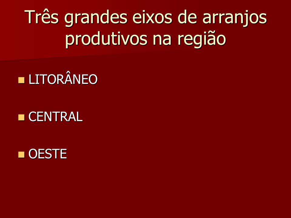 Três grandes eixos de arranjos produtivos na região LITORÂNEO LITORÂNEO CENTRAL CENTRAL OESTE OESTE