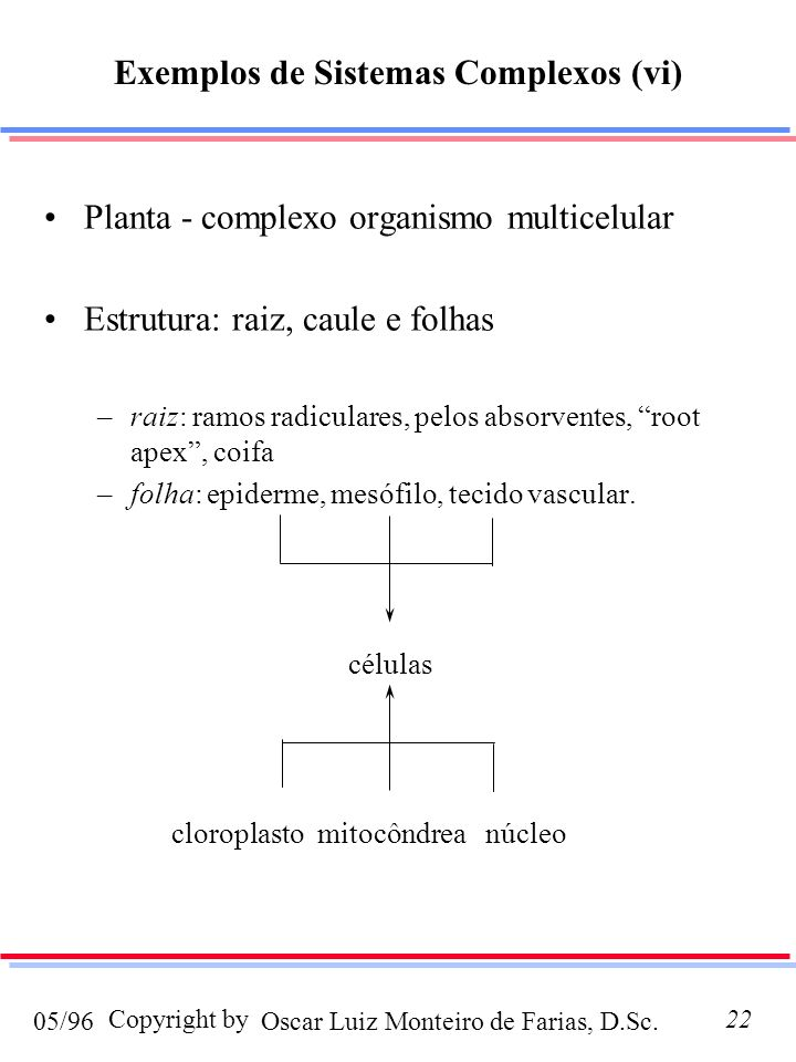 Oscar Luiz Monteiro de Farias, D.Sc.05/96 Copyright by22 Planta - complexo organismo multicelular Estrutura: raiz, caule e folhas –raiz: ramos radiculares, pelos absorventes, root apex, coifa –folha: epiderme, mesófilo, tecido vascular.