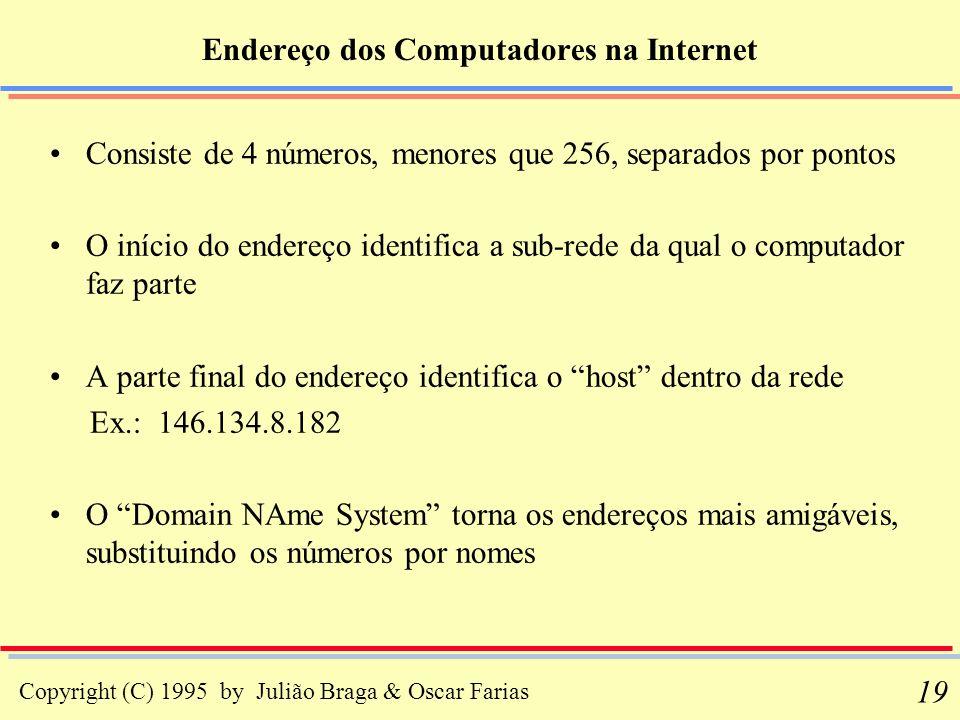 Copyright (C) 1995 by Julião Braga & Oscar Farias 19 Consiste de 4 números, menores que 256, separados por pontos O início do endereço identifica a su