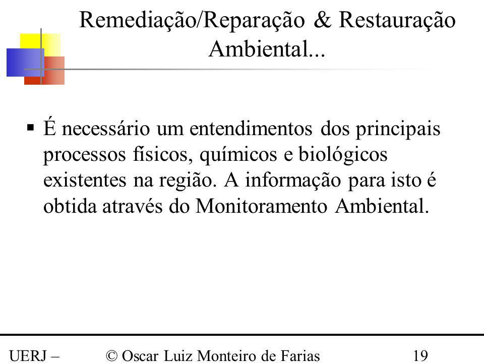 UERJ – Março 2008 © Oscar Luiz Monteiro de Farias19 É necessário um entendimentos dos principais processos físicos, químicos e biológicos existentes n