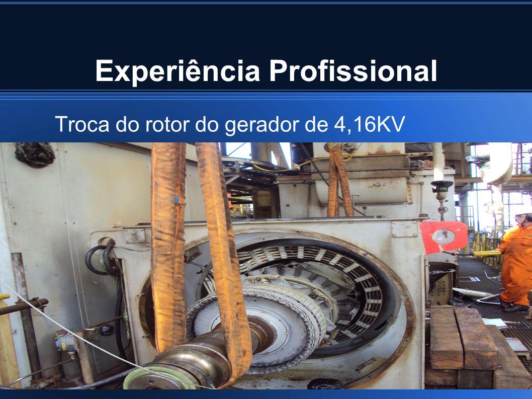 Experiência Profissional Troca do rotor do gerador de 4,16KV