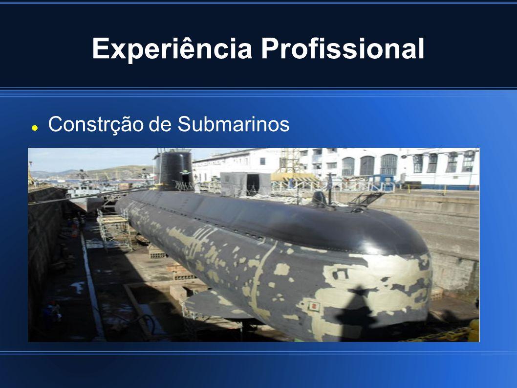 Experiência Profissional Constrção de Submarinos