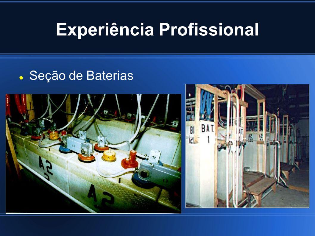 Experiência Profissional Seção de Baterias