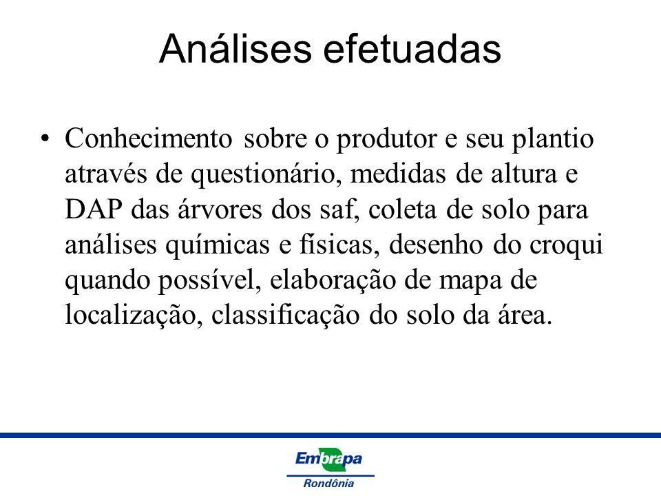 Análises efetuadas Conhecimento sobre o produtor e seu plantio através de questionário, medidas de altura e DAP das árvores dos saf, coleta de solo pa
