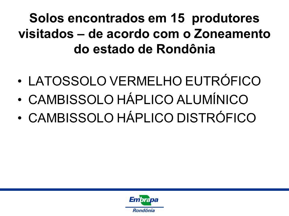 Solos encontrados em 15 produtores visitados – de acordo com o Zoneamento do estado de Rondônia LATOSSOLO VERMELHO EUTRÓFICO CAMBISSOLO HÁPLICO ALUMÍN