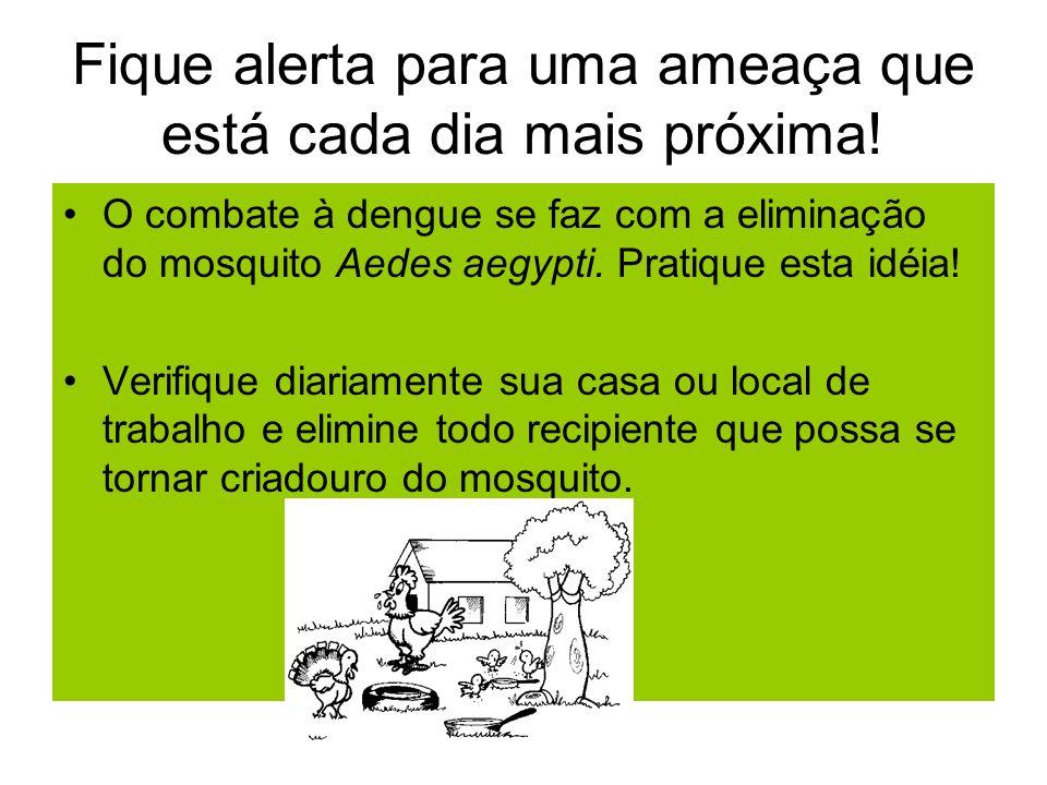 Fique alerta para uma ameaça que está cada dia mais próxima! O combate à dengue se faz com a eliminação do mosquito Aedes aegypti. Pratique esta idéia
