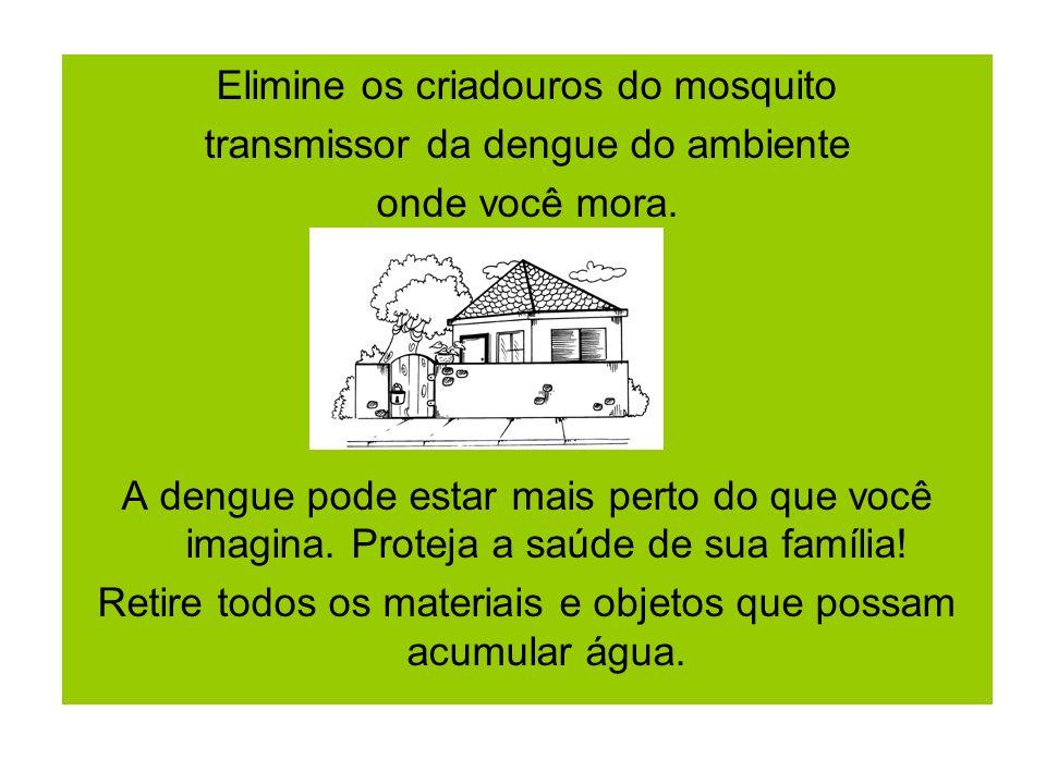 Elimine os criadouros do mosquito transmissor da dengue do ambiente onde você mora. A dengue pode estar mais perto do que você imagina. Proteja a saúd