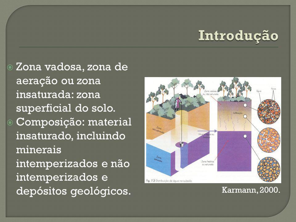 Zona vadosa, zona de aeração ou zona insaturada: zona superficial do solo.