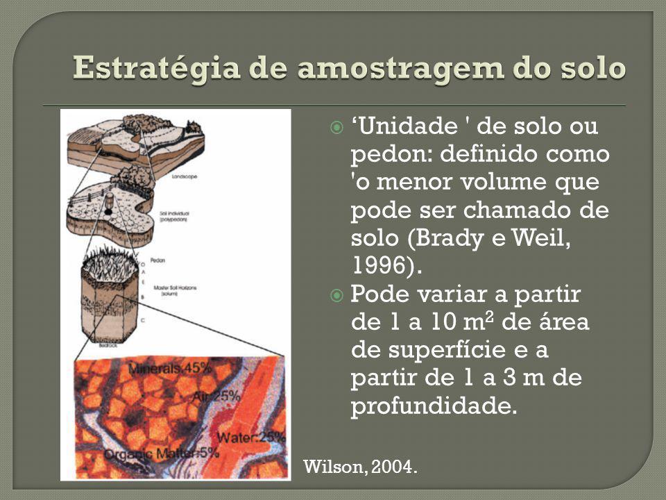 Unidade de solo ou pedon: definido como o menor volume que pode ser chamado de solo (Brady e Weil, 1996).