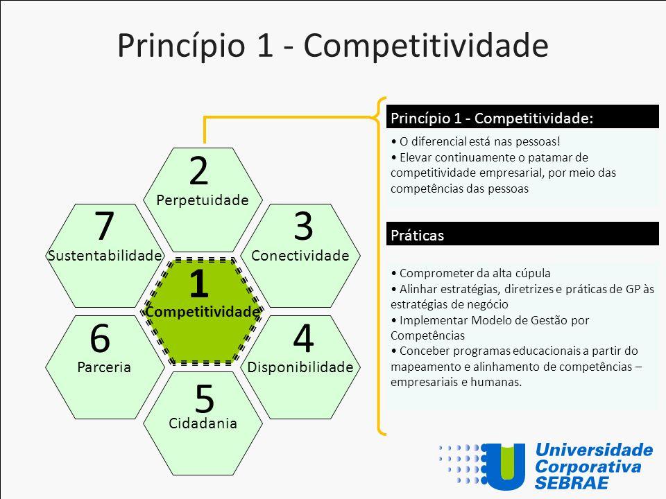 Princípio 1 - Competitividade Competitividade Perpetuidade Cidadania Conectividade Disponibilidade Sustentabilidade Parceria 1 2 5 3 4 7 6 O diferenci