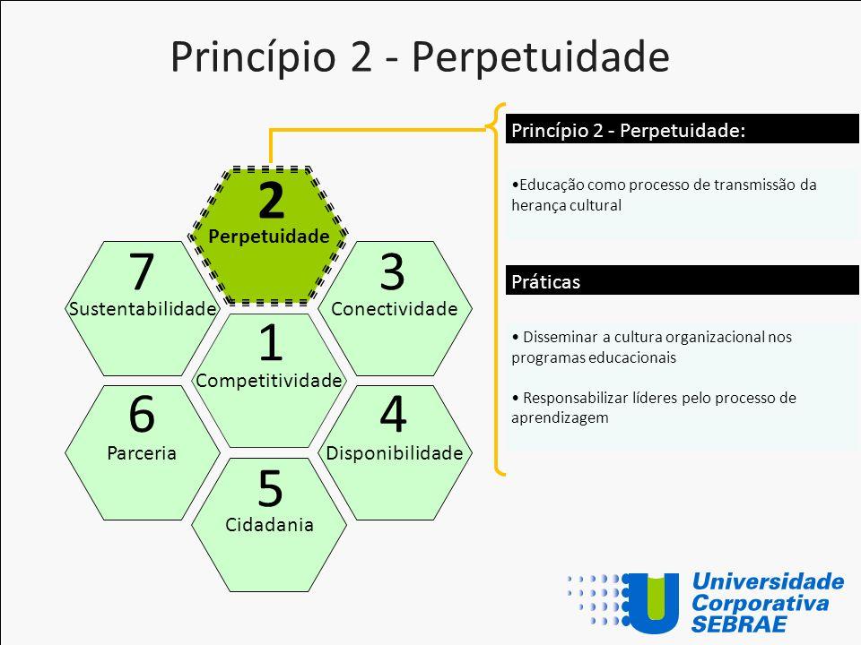 Princípio 2 - Perpetuidade Competitividade Perpetuidade Cidadania Conectividade Disponibilidade Sustentabilidade Parceria 1 2 5 3 4 7 6 Educação como