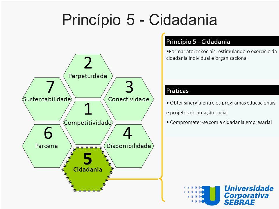 Princípio 5 - Cidadania Competitividade Perpetuidade Conectividade Disponibilidade Sustentabilidade Parceria 1 2 3 4 7 6 Formar atores sociais, estimu