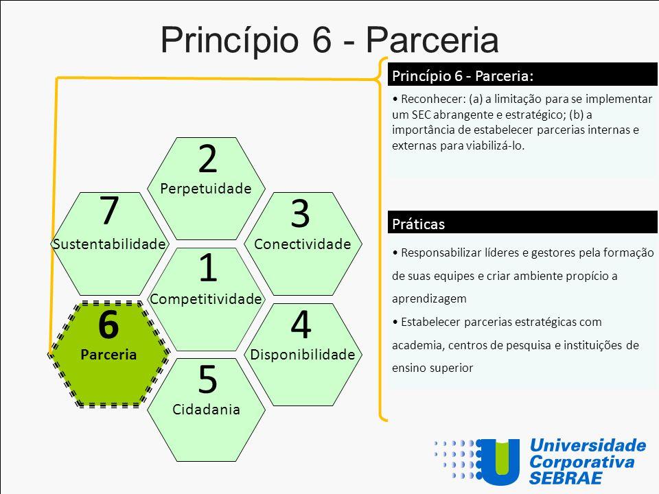 Princípio 6 - Parceria Competitividade Perpetuidade Cidadania Conectividade Disponibilidade Parceria 1 2 5 3 46 Reconhecer: (a) a limitação para se im