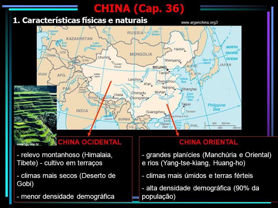 CHINA (Cap. 36) 1. Características físicas e naturais CHINA OCIDENTAL - relevo montanhoso (Himalaia, Tibete) - cultivo em terraços - climas mais secos