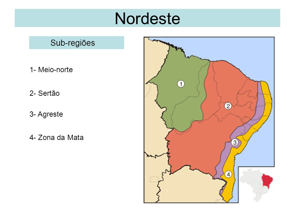 Nordeste Regiões geográficas 4- Zona da Mata Localizada ao leste, entre o Planalto da Borborema e a costa, fica a Zona da Mata, que se estende do Rio Grande do Norte ao sul da Bahia, as chuvas são abundantes.