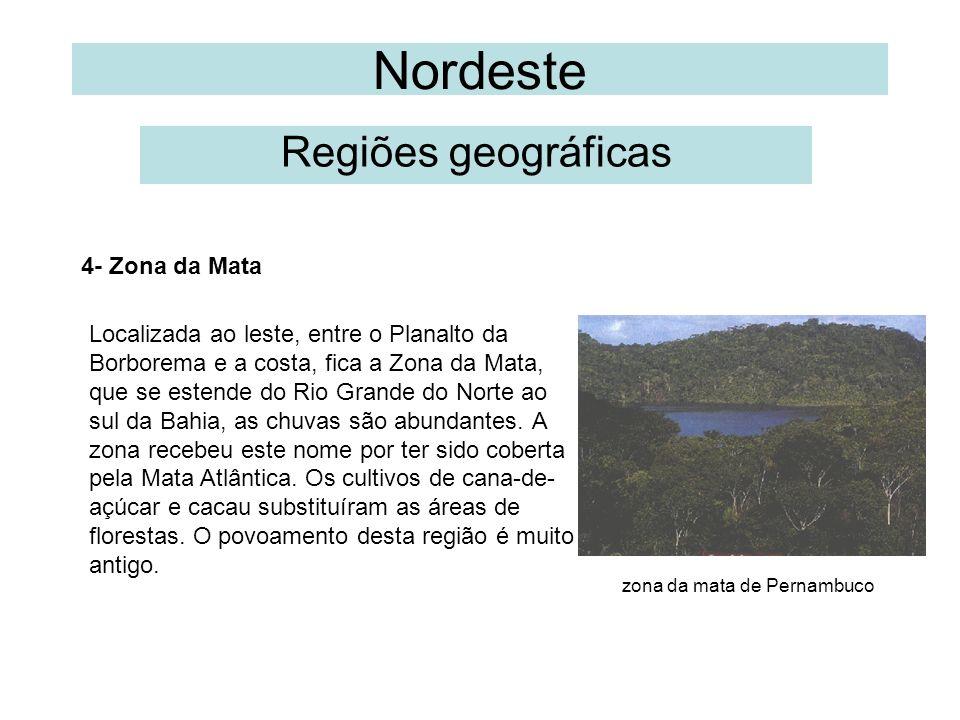 Nordeste Regiões geográficas 4- Zona da Mata Localizada ao leste, entre o Planalto da Borborema e a costa, fica a Zona da Mata, que se estende do Rio