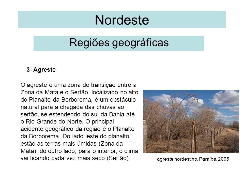 Nordeste Regiões geográficas O agreste é uma zona de transição entre a Zona da Mata e o Sertão, localizado no alto do Planalto da Borborema, é um obst