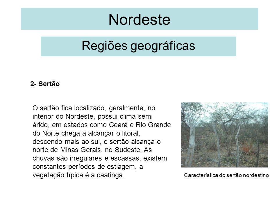 Nordeste Regiões geográficas 2- Sertão O sertão fica localizado, geralmente, no interior do Nordeste, possui clima semi- árido, em estados como Ceará