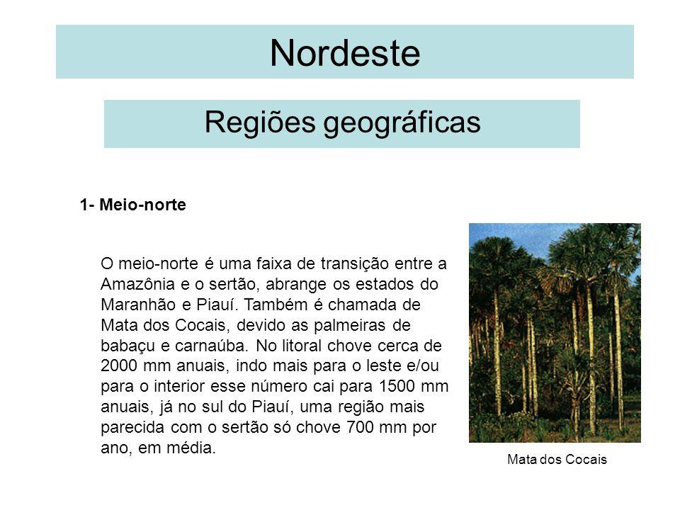 Nordeste Regiões geográficas 1- Meio-norte O meio-norte é uma faixa de transição entre a Amazônia e o sertão, abrange os estados do Maranhão e Piauí.