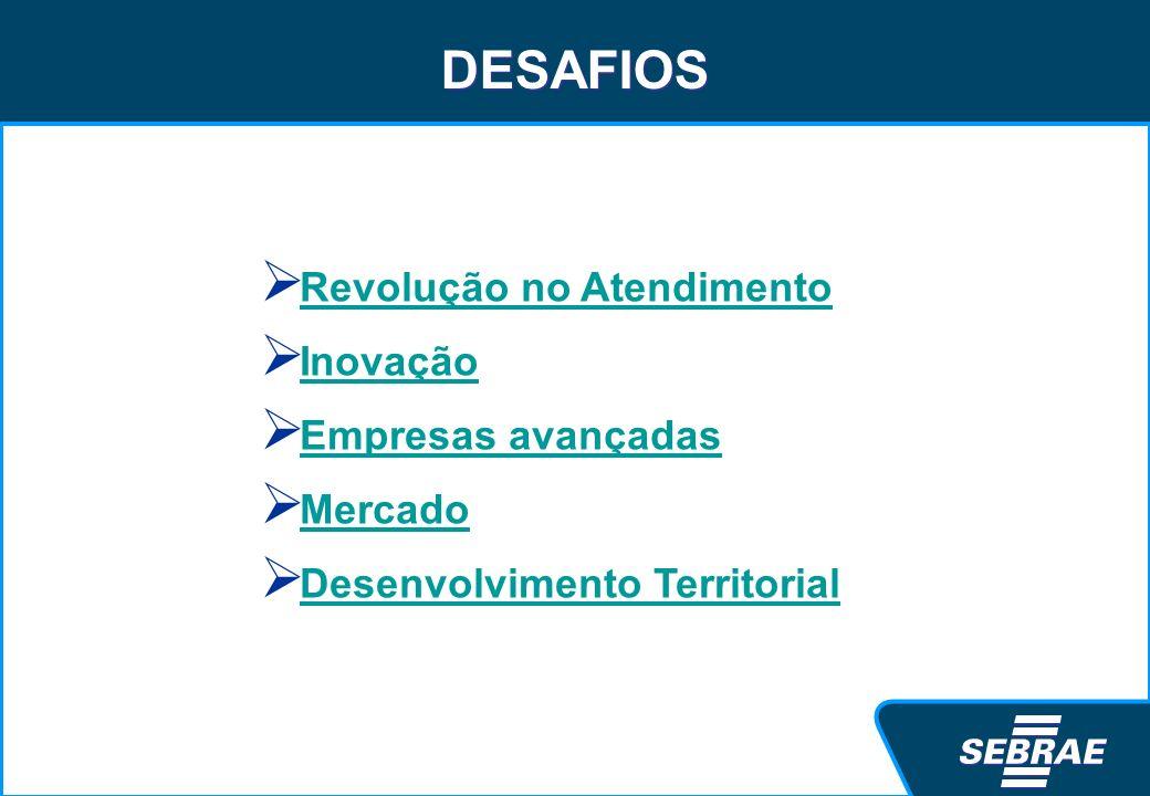 DESAFIOS Revolução no Atendimento Inovação Empresas avançadas Mercado Desenvolvimento Territorial