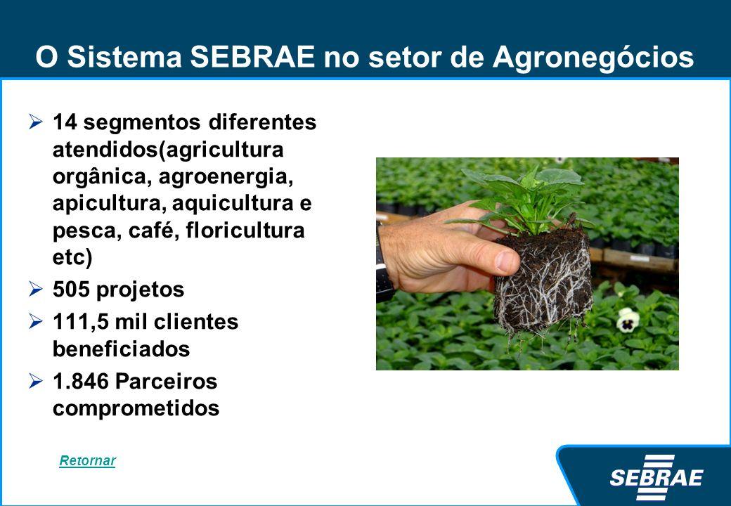 O Sistema SEBRAE no setor de Agronegócios 14 segmentos diferentes atendidos(agricultura orgânica, agroenergia, apicultura, aquicultura e pesca, café,