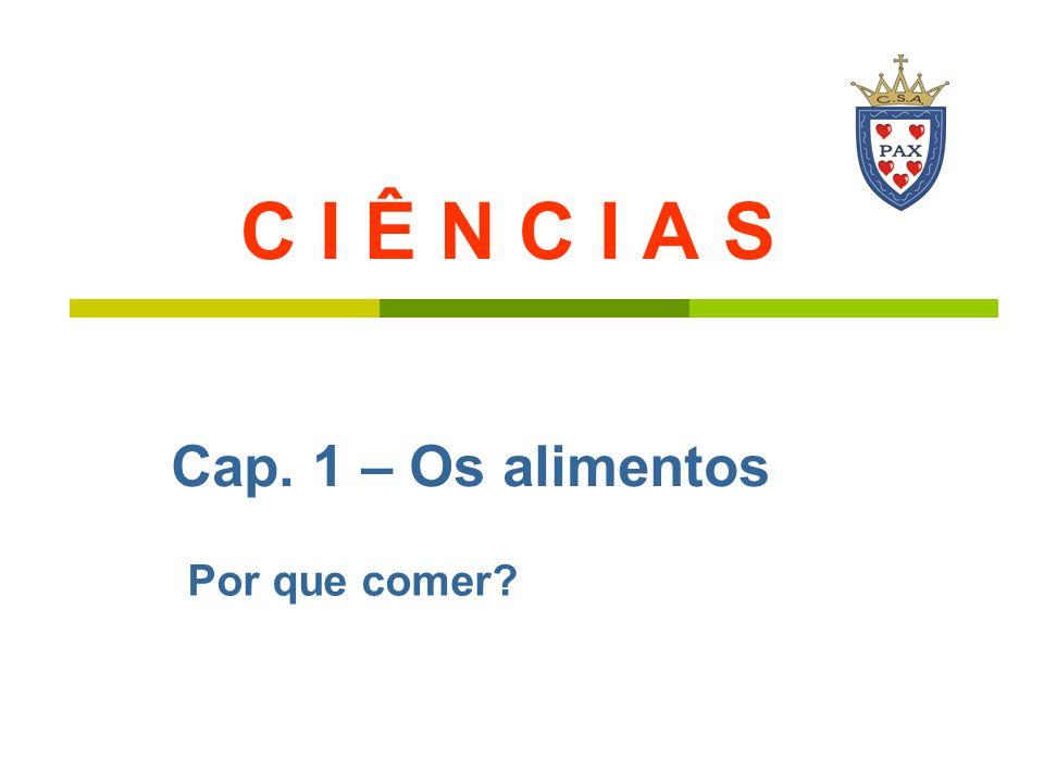 Elétrica automóvel seres vivos Brasil gasolina / produtores, Hidrelétrica álcool autótrofos SOL E N E R G I A consumidores, Heterótrofos (predadores e parasitas)