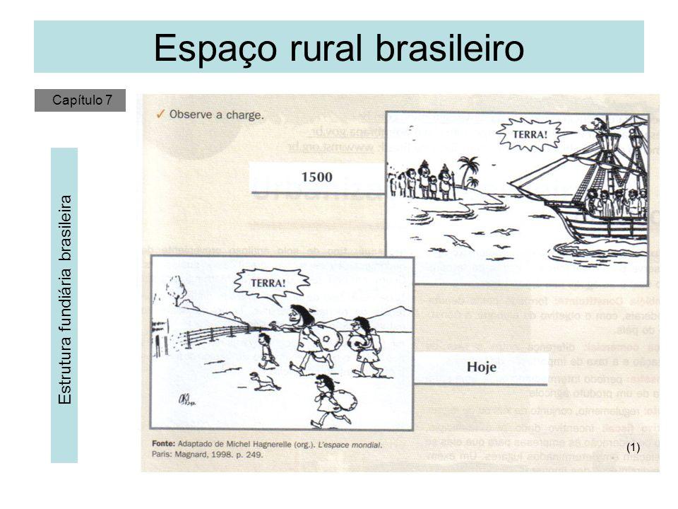 Espaço rural brasileiro Estrutura fundiária brasileira A Coroa Portuguesa dividia a terra em Sesmarias (Légua Sesmaria equivalia a 6600 metros) até 1822.