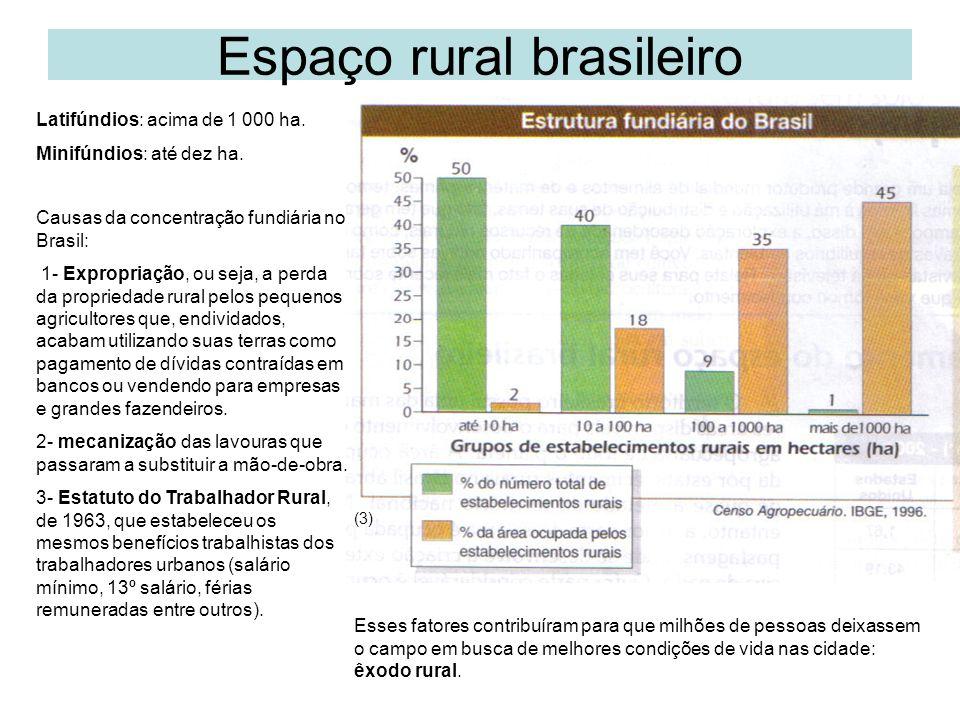 Espaço rural brasileiro Latifúndios: acima de 1 000 ha.