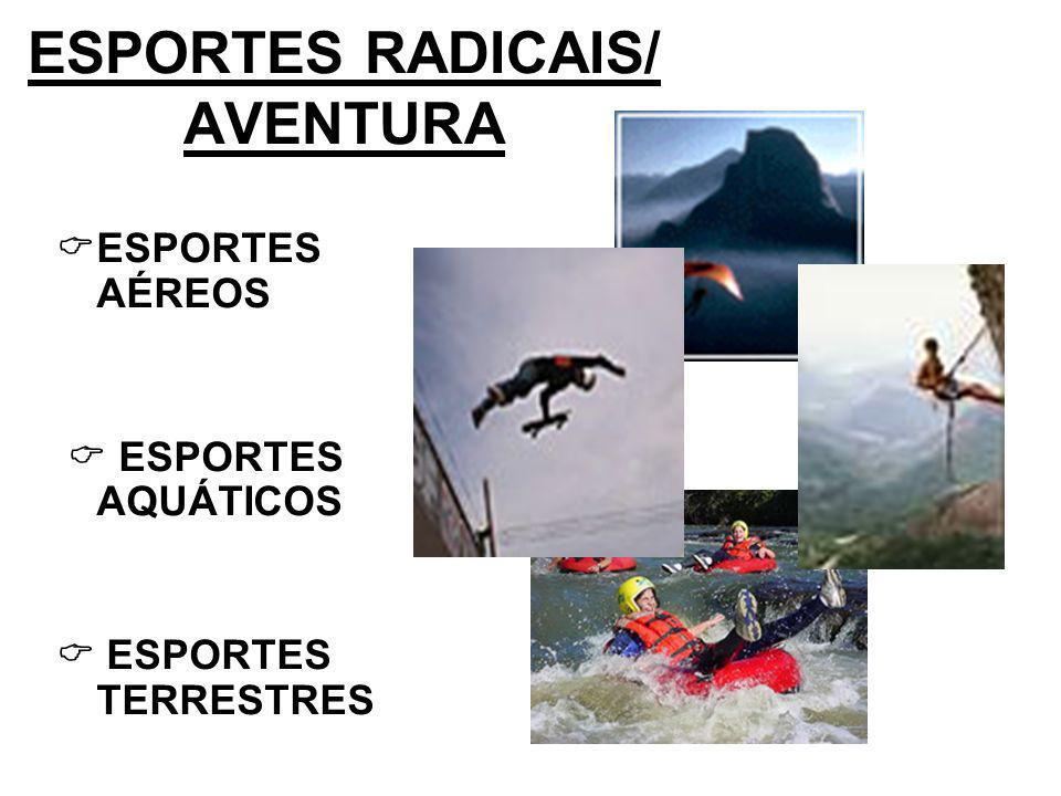 ESPORTES AÉREOS Asa delta ou vôo livre Balonismo Pará-quedismo Parapente ou Paraglide Bungy jump Sky surf