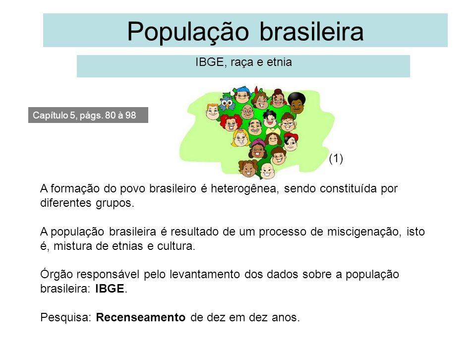 População brasileira IBGE, raça e etnia Capítulo 5, págs. 80 à 98 A formação do povo brasileiro é heterogênea, sendo constituída por diferentes grupos