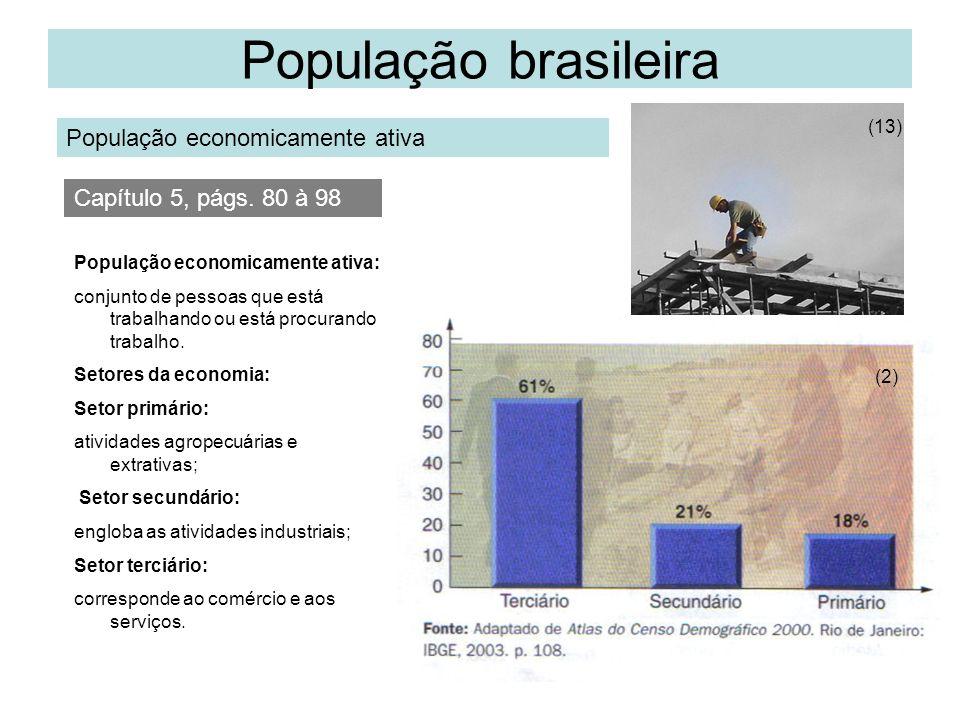 População brasileira População economicamente ativa (13) Capítulo 5, págs. 80 à 98 População economicamente ativa: conjunto de pessoas que está trabal