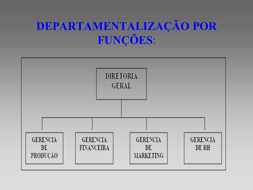 A Departamentalização funcional agrupa funções comuns.