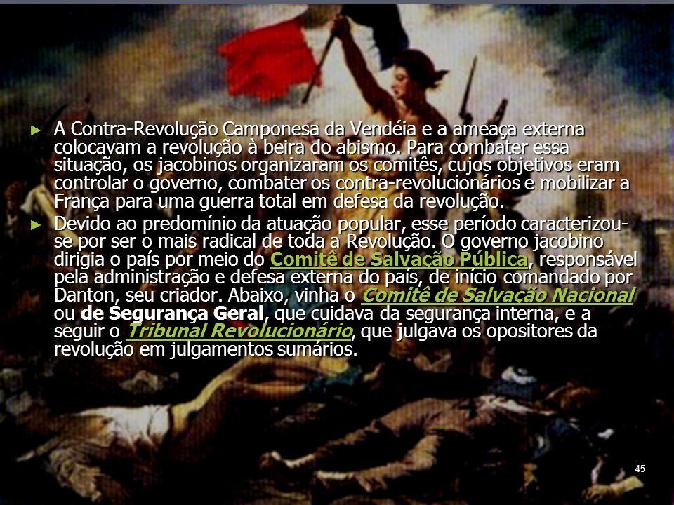 45 A Contra-Revolução Camponesa da Vendéia e a ameaça externa colocavam a revolução à beira do abismo.